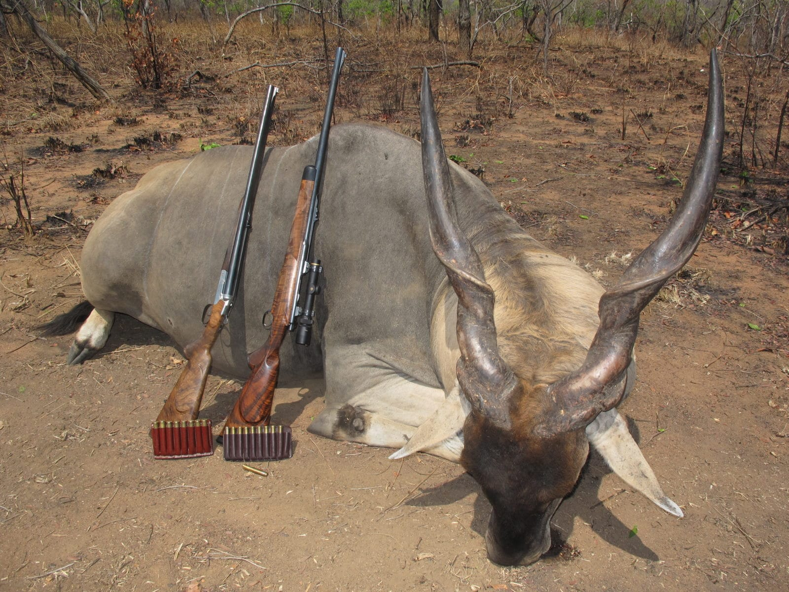 , Mozambique Hunting