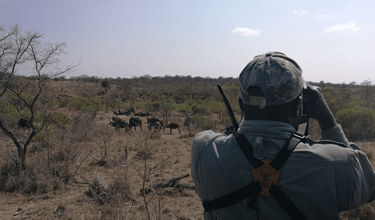 Hunting in Mozambique | Mozambique Hunting Concessions | Graham Sales Safaris
