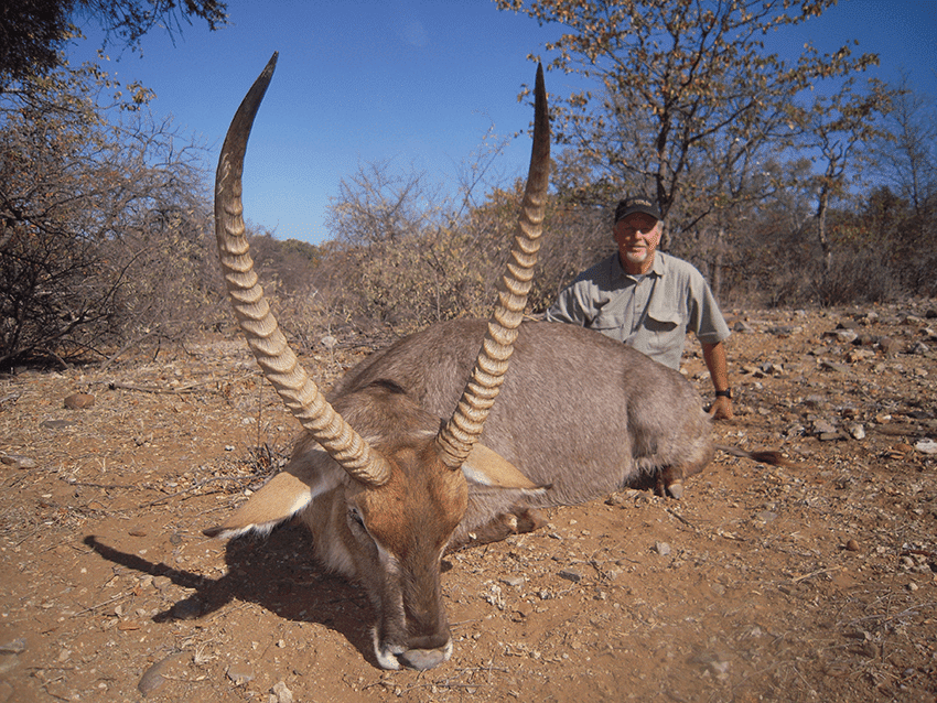 Plains Game Hunting Africa & South Africa | Graham Sales Safaris